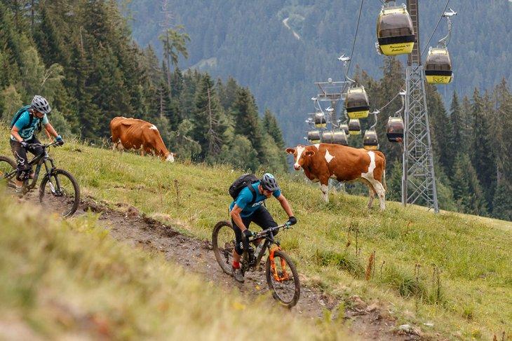 Skitouren & Tourenski Tourismusverband Groarltal