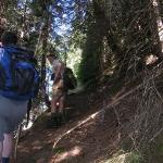 """Der Weg über die """"Harisn"""" - hier wurde früher im Winter Bergheu geliefert"""