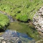 Traumhafte Fließgewässer - hier könnte man sogar baden