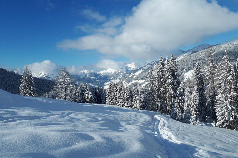 Skitour zur Loosbühelalm