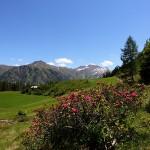 Blick von der Hirschgrubenalm zu Klingspitz und Nebelkareck