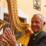 Walter Mooslechner an der Harfe