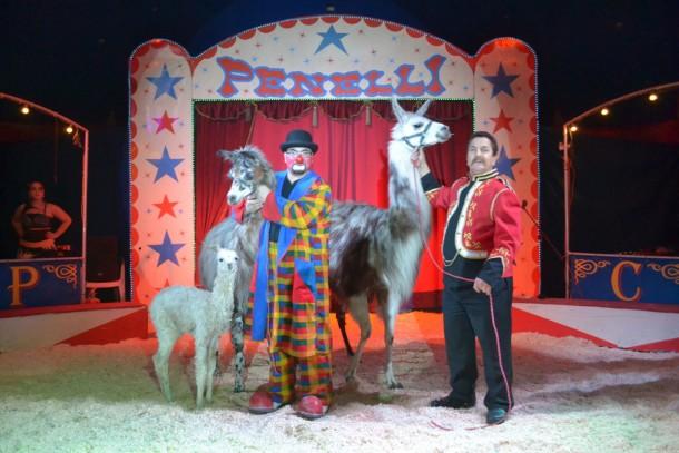 Circus Penelli - Magnet für Familien