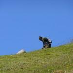 Hirter Hans von der Schrambachhütte bei der Almmahd unterm Draugstein