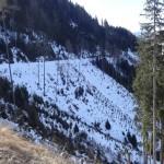 Einhänge im Alpendorf, die bei großen Schneemengen eine Gefährdung der Großarler Landesstraße darstellen könnten
