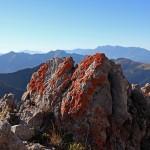 Rot Flechten zieren das Kalkgestein beim Aufstieg zum Draugstein