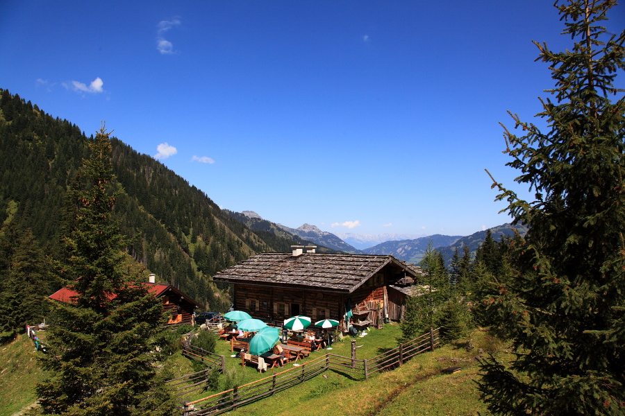 Die Bachalm (1.535 m) in Großarl