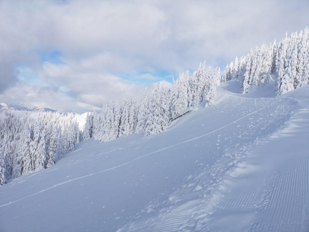 Alles weiß bei der Skischaukel Großarltal-Dorfgastein