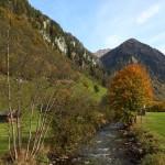 Herbst an der Großarler Ache in Hüttschlag