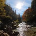 Herbst an der Großarler Ache 4