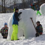 Eisbär im Feinschliff