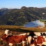 Großarltaler Riesen-Schnee-Iglu am Sommerberg