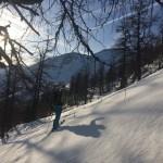 Erste Sonnenstrahlen im Alpswald