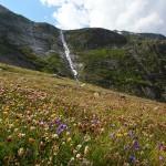 Tosend stürzen die Wasserfälle zu Tal