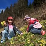 Anna und Christina beim Blumenpflücken