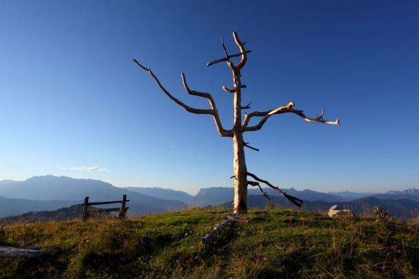 """Das neue """"Natur-Kreuz"""" am Vorgipfel der Gabel - gefertigt aus einer alten Zirbe"""