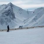 Naturschauspiel der Berge - Kuh im Großarltal