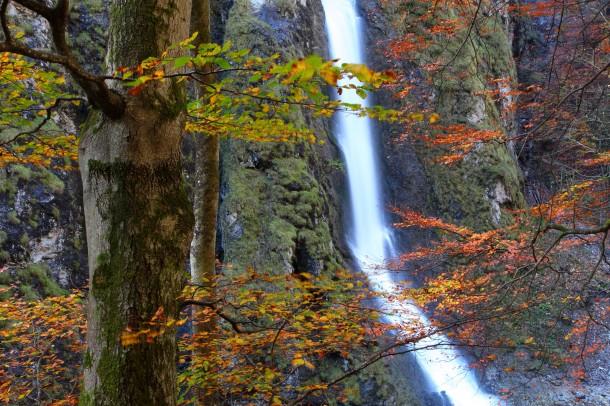 Oktober 2014: Herbst in der Liechtensteinklamm