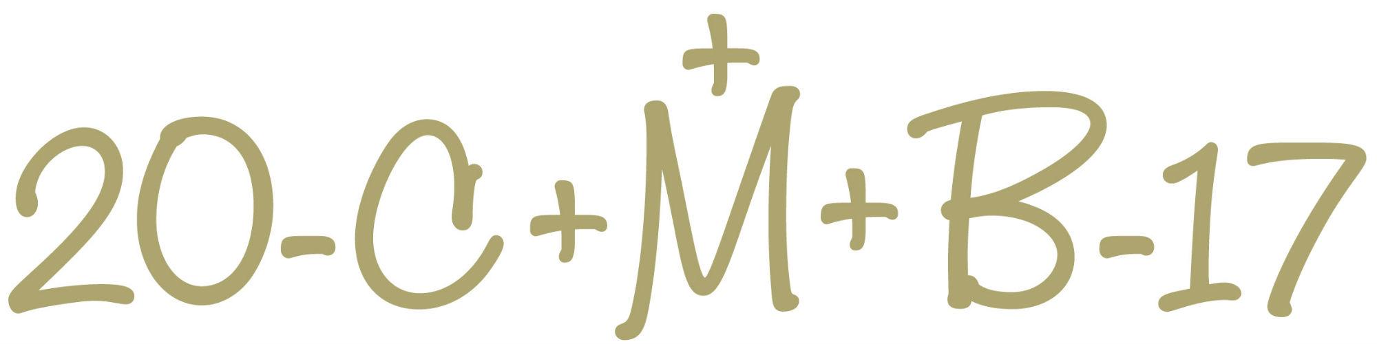 Logo_Sternsingen_2017