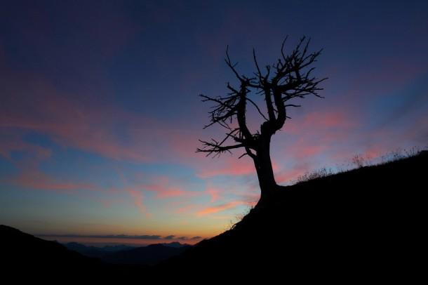 Tagesanbruch oberhalb der Loosbühelalm