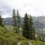 Wanderung Richtung Loosbühelalm