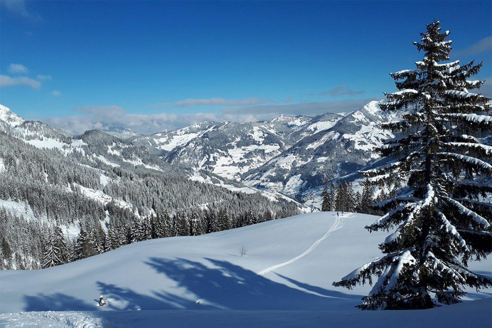Super Wetter für eine Skitour