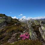 Abstieg vom Mureck - ein herrliches Stück Nationalpark Hohe Tauern