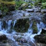 Frisches Wasser überall