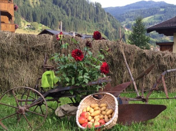 Schwedenreiter als Bauernherbstdekoration vorm Hotel Nesslerhof