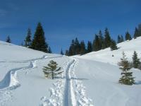 Skitour-Grossarltal-050110_1