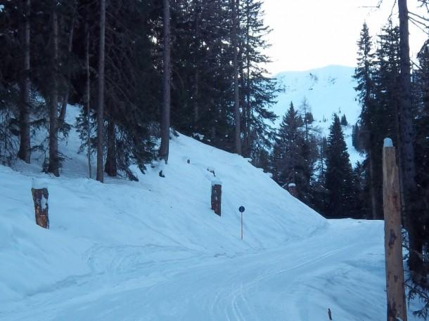 Neue Skiabfahrtsverbindung - die Baumstümpfe am Pistenrand werden künstlerisch gestaltet. Gute Ideen gefragt!