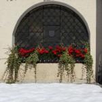 Blumen und Schnee - hier am Eingang zur Kirche