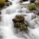 Quirlig sprudelt das Wasser über die moosbewachsenen Steine