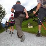 Wanderer am Kapellen-Wanderweg