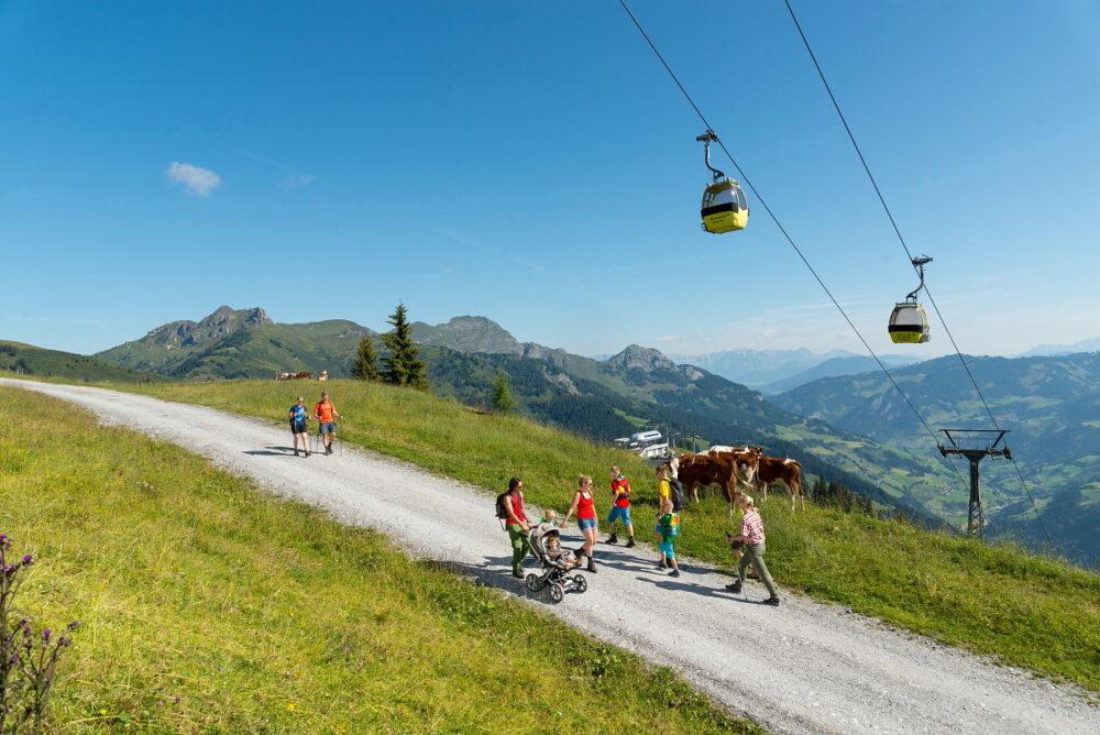 Sommerliftln Panoramabahn
