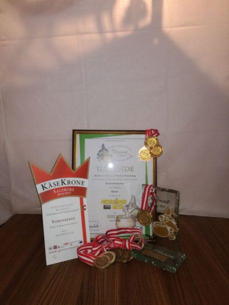Auszeichnungen vom Bauernladenstüberl Hüttschlag