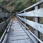 Brücke beim Gretchen-Ruhe-Wasserfall