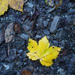 Herbst im Grossarltal