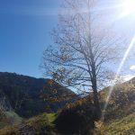 Herbstwanderung Gretchen Ruhe in Großarl