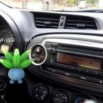Im Auto Myrapla