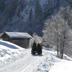 Pferdekutschenfahrt im Talschluss von Hüttschlag