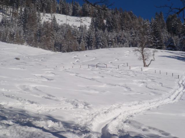 skitour21.02.2010-klein-2