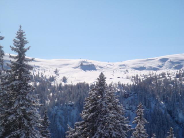 skitour21.02.2010-klein5