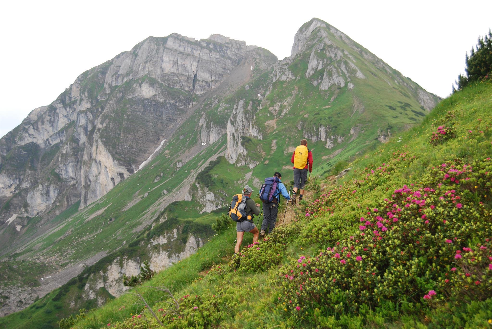 berg_gesund_hiking_tour_to_the_hollwand, Großarl