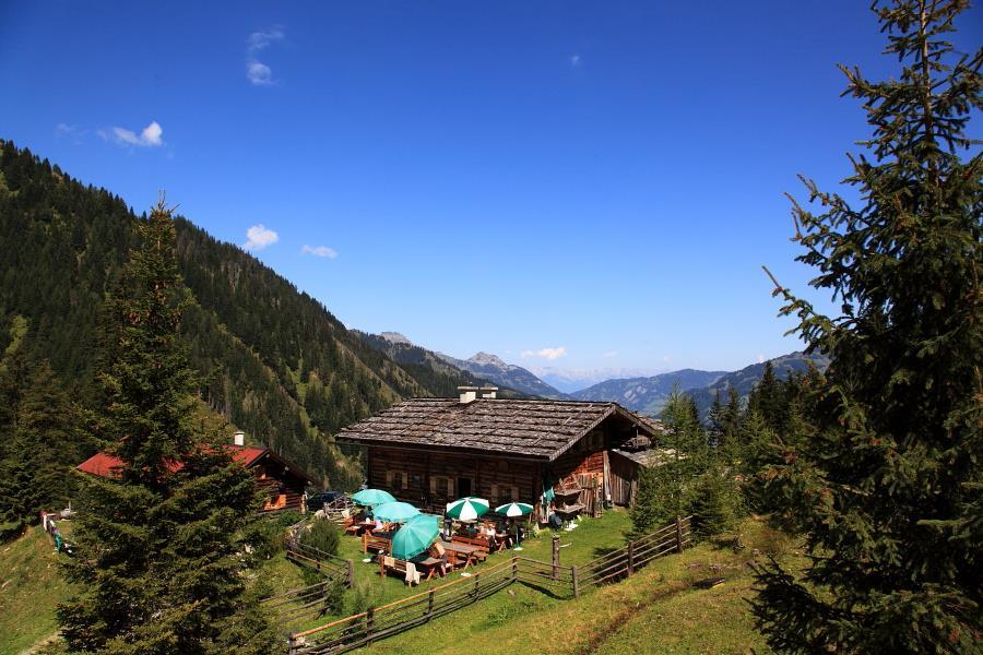 guided_bike_tour_to_the_loosbuhelalm_1769_m, Großarl