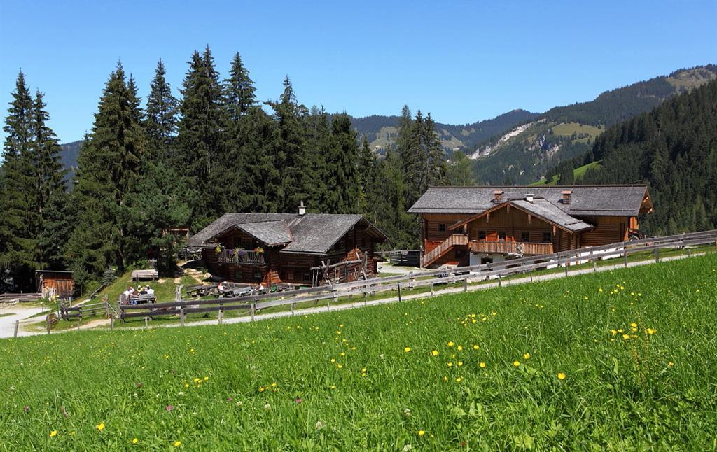guided_bike_tour_to_the_mooslehenalm_1499_m,