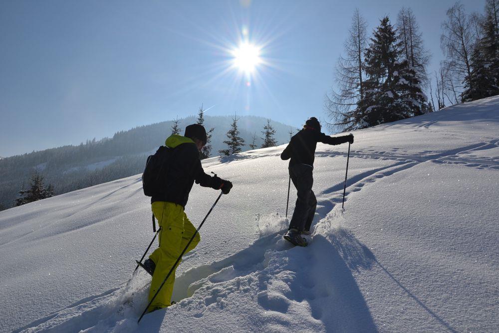 berg_gesund_snowshoe_hike_trial_easy_in_huttschlag, Großarl